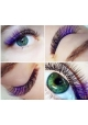 GK Volume color eyelashes